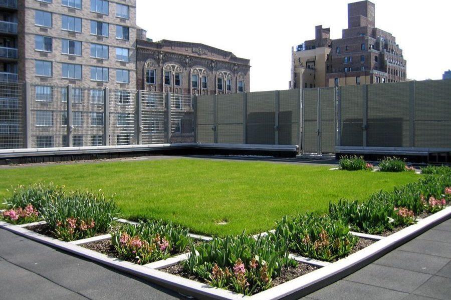 zeleni-krov-extezivni-travnjak-dom2-domnakvadrat