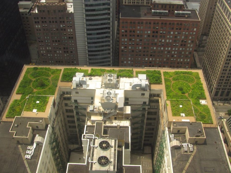 zeleni-krov-extezivni-zgrada-dom2-domnakvadrat