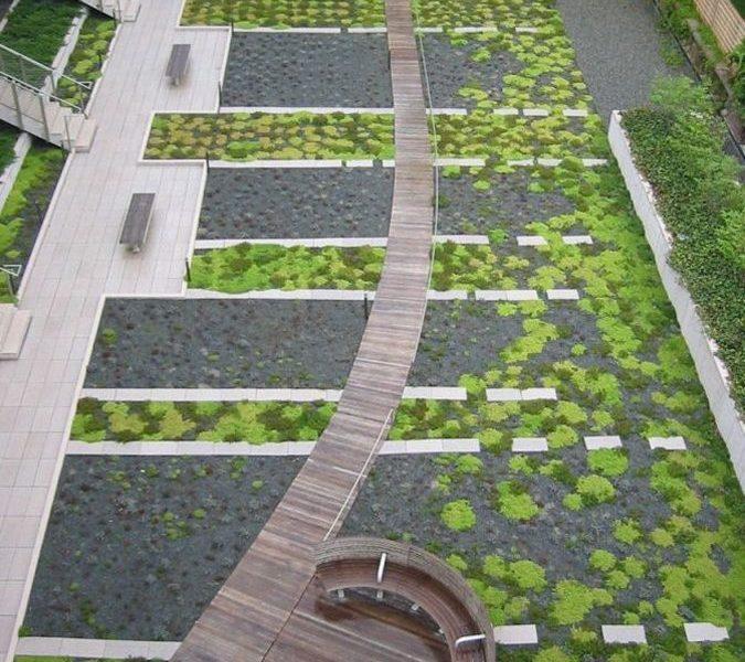 zeleni-krov-extezivni-zgrada-staze-dom2-domnakvadrat