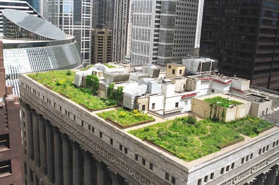 zeleni-krov-intenzivni-zgrada-dom2-domnakvadrat
