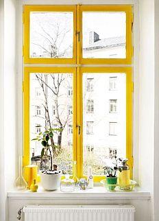 Žuti prozor Dom2