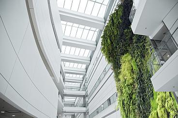 Zelene fasade Dom2