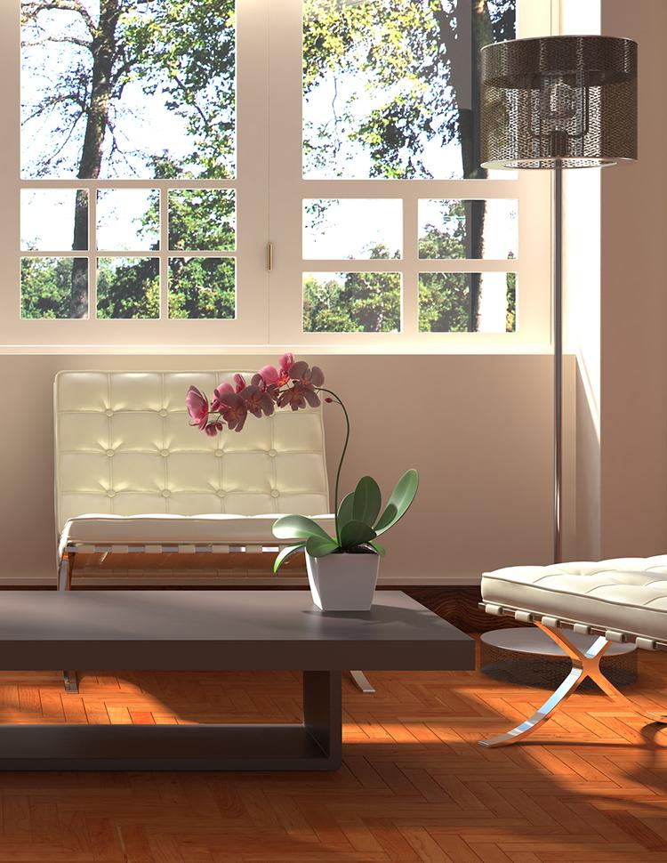 mjesto za orhideju u domu dom2