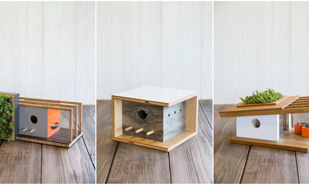 Birdhouses_dom_2
