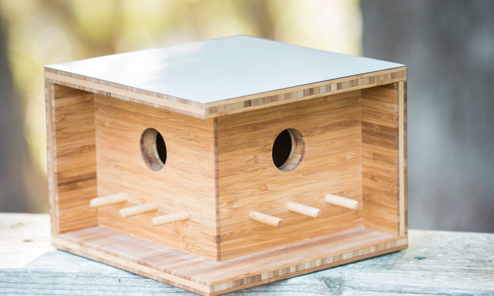 birdhouse-bauhaus-dom-2