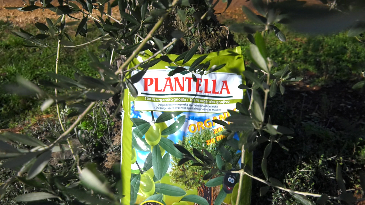 plantella-organik-gnojivo-za-masline-domnakvadrat