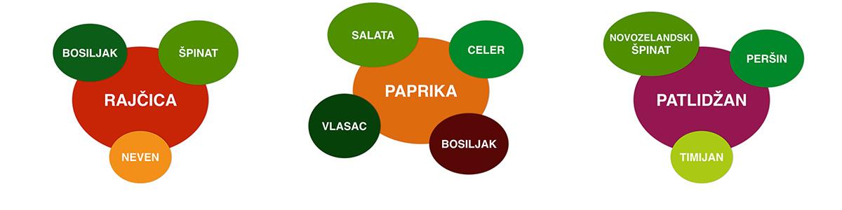 kombinacije-plodovitog-bilja-s-korisnim-biljkama-plantella-domnakvadrat