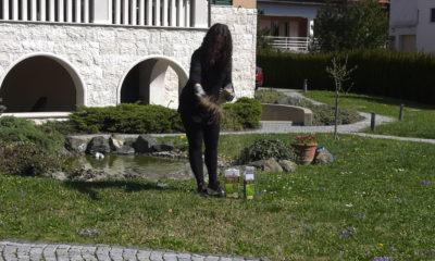 odrzavanje-travnjaka-plantella-domnakvadrat