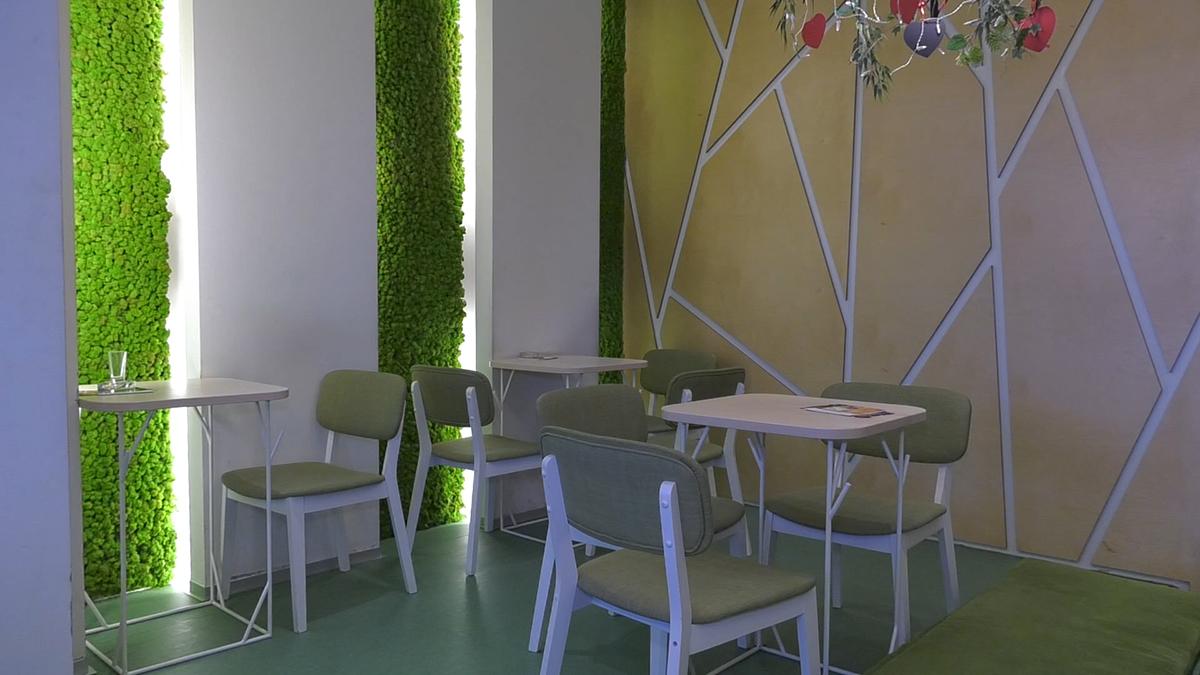 vertikalni-vrt-tech-garden-nise-domnakvadrat