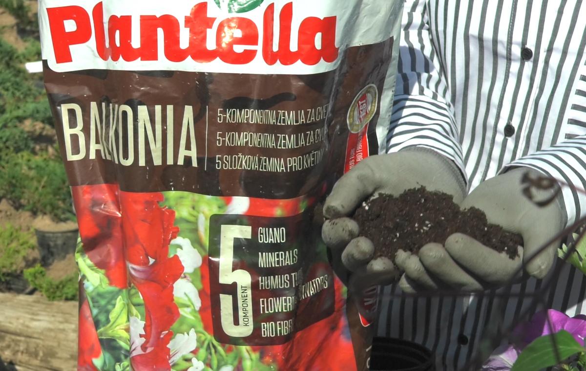plantella-balkonia-petkomponentna-zemlja-domnakvadrat