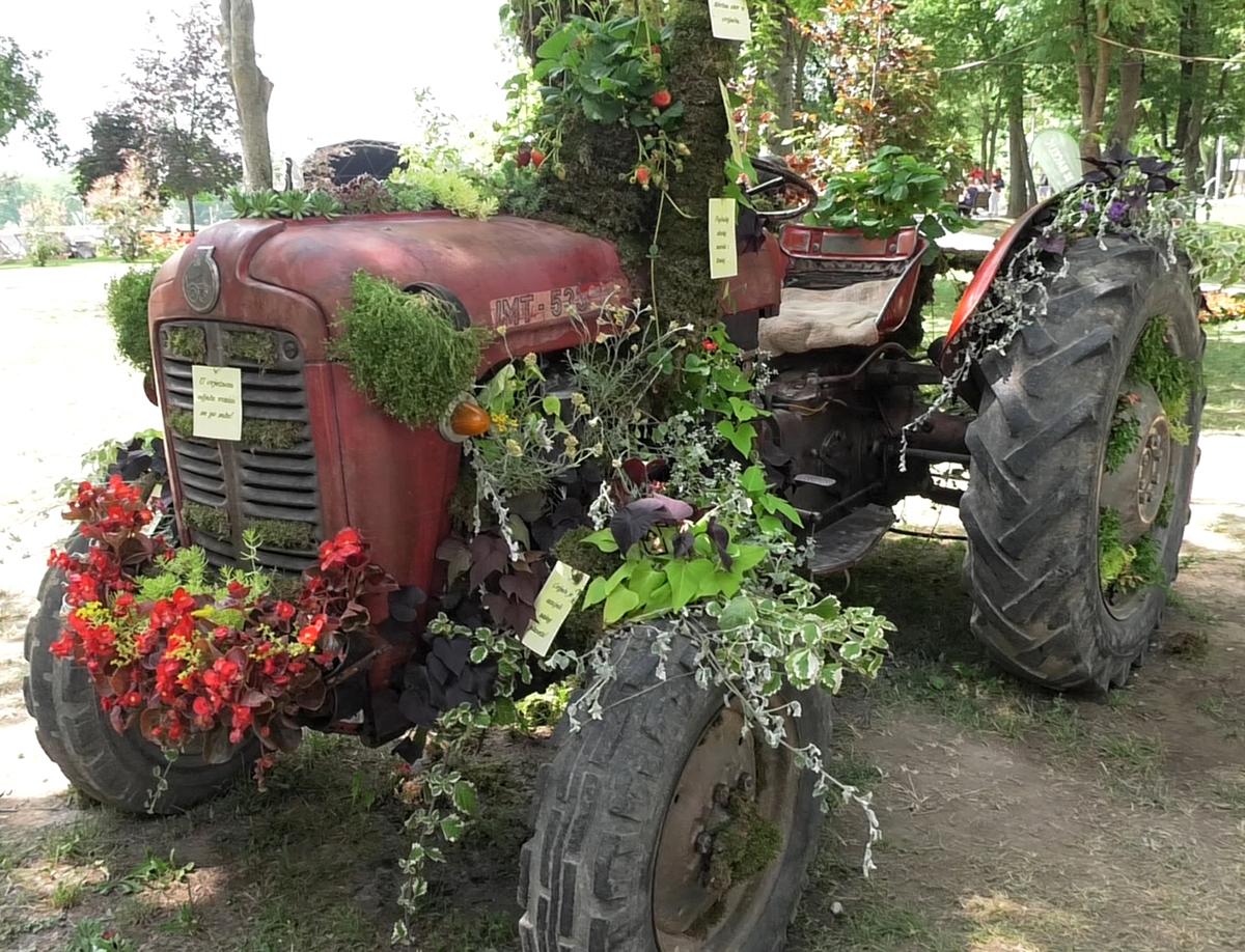 floraart-2018-cvjetni-traktor-domnakvadrat