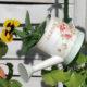 macuhice-vrtni-centar-sestine-domnakvadrat