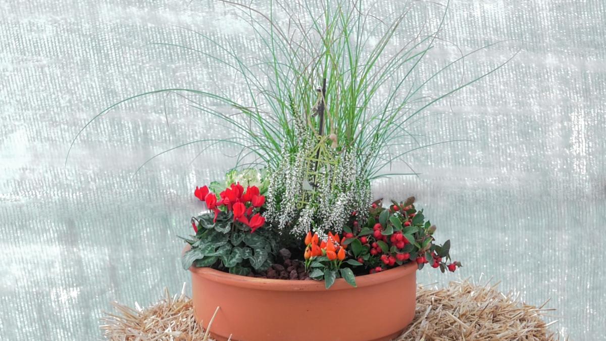 jesen-teglica-jesenska-aranžman-cvijeće