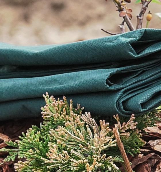 vrt-biljke-zastita-folija-ruze-zemlja-jesen-domnakvadrat
