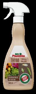 thymi-plantella-domnakvadrat
