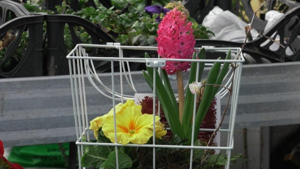 košara sa cvijećem