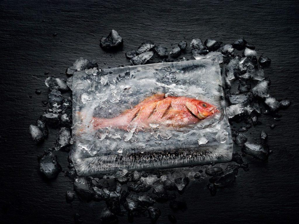Dramatična ilustracija načina na koji je Dialog pećnica revolucionirala kuhanje - riba ugrađena u blok leda: riba u središtu kuha se bez topljenja leda.
