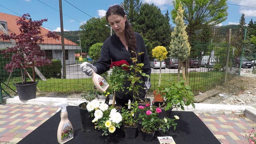bio-plantella-natur-njega-i-zastita-malog-vrta-domnakvadrat