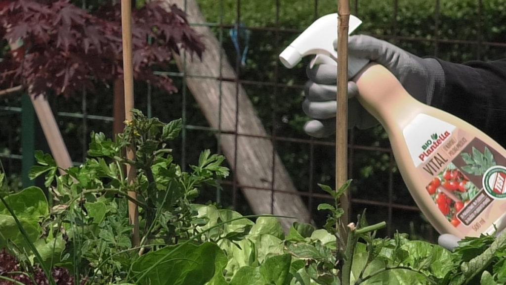 bio-plantella-vital-njega-i-zastita-malog-vrta-domnakvadrat