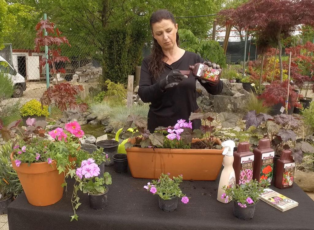 plantella-cvet-gnojivo-sareni-vrt-domnakvadrat