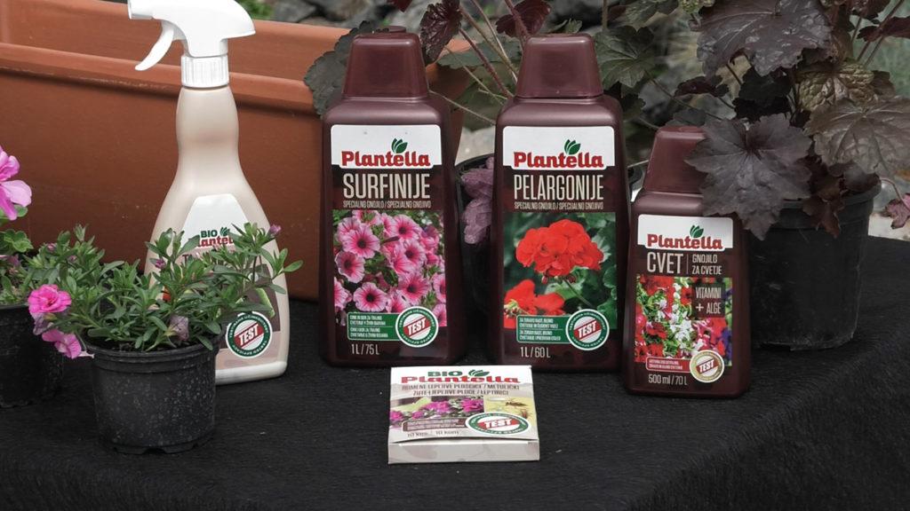 plantella-gnojiva-za-surfinije-pelargonije-domnakvadrat