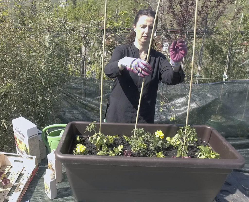 plantella-sadnja-malog-vrta-oslonac-za-rajcice-domnakvadrat