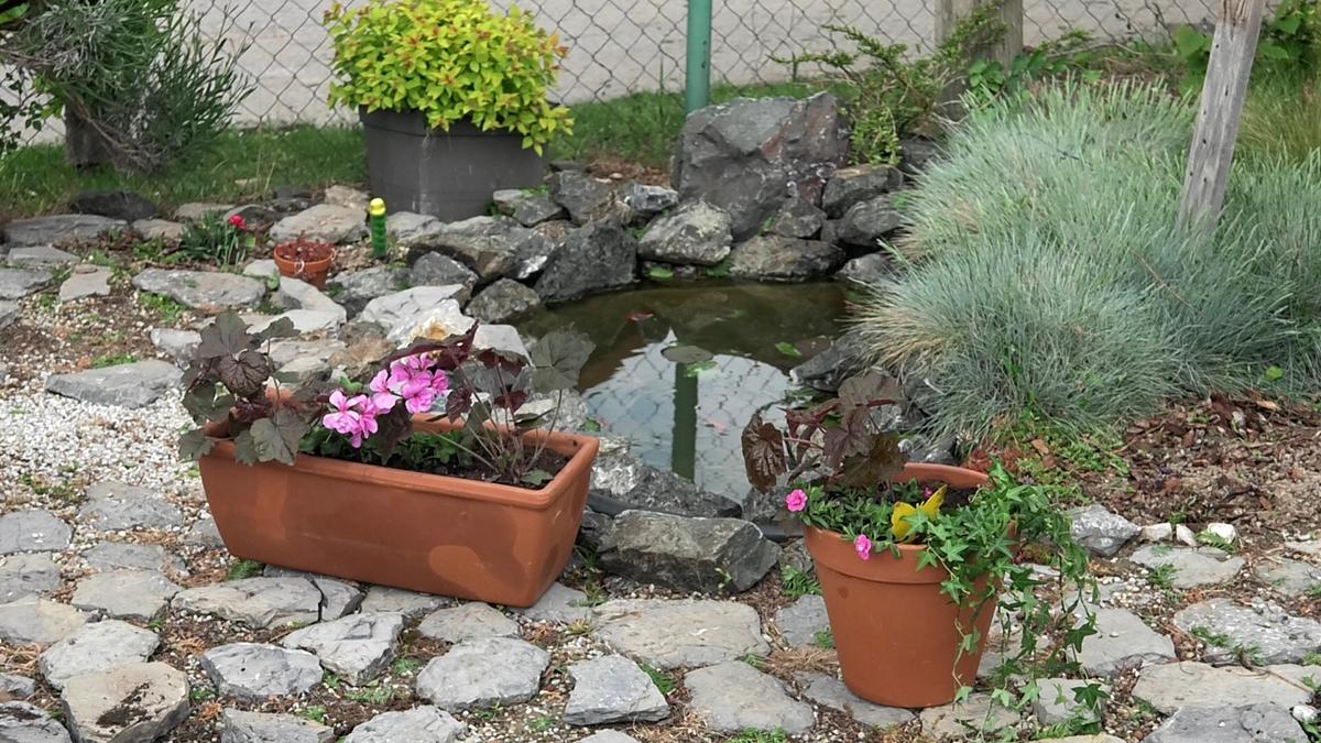 plantella-sareni-vrt-i-balkon-domnakvadrat