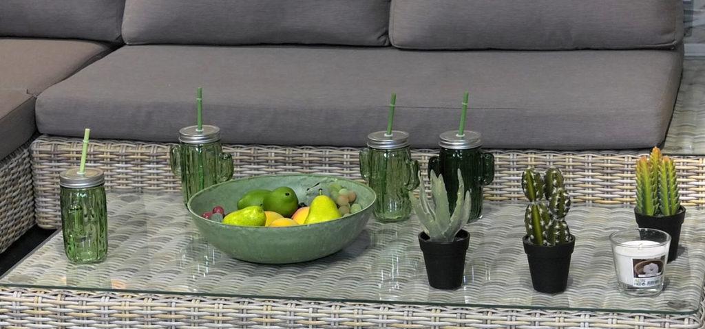 case-kaktusi-lesnina-domnakvadrat