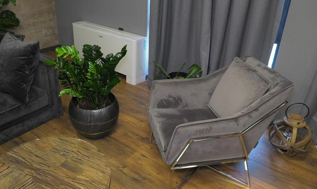 biljke-za-tamne-prostore-zamioculcas-iris-mbm-vrtni-centar-domnakvadrat