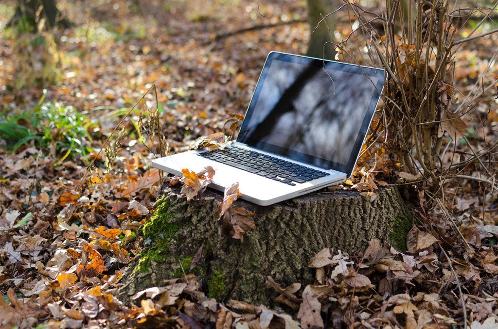 laptop-u-šuni-kućni-ured-blog-snježana-turajlija