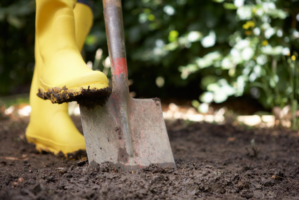 vrtlarenje-povrtnjak-domnakvadrat
