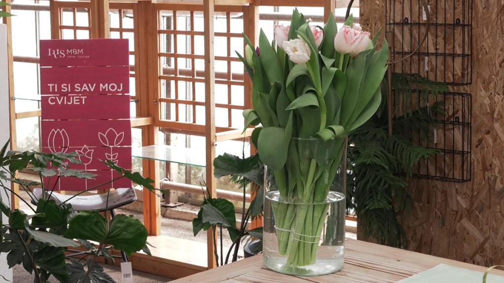 rezano-cvijeće-u-vazi-domnakvadrat