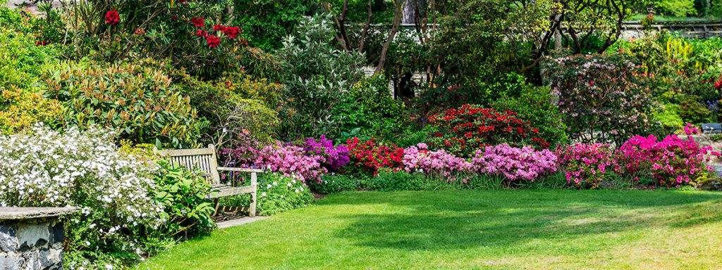 vrt-organizacija biljaka-domnakvadrat
