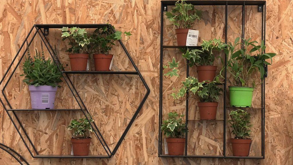 kašete-organizacija-biljaka-iris-mbm-domnakvadrat