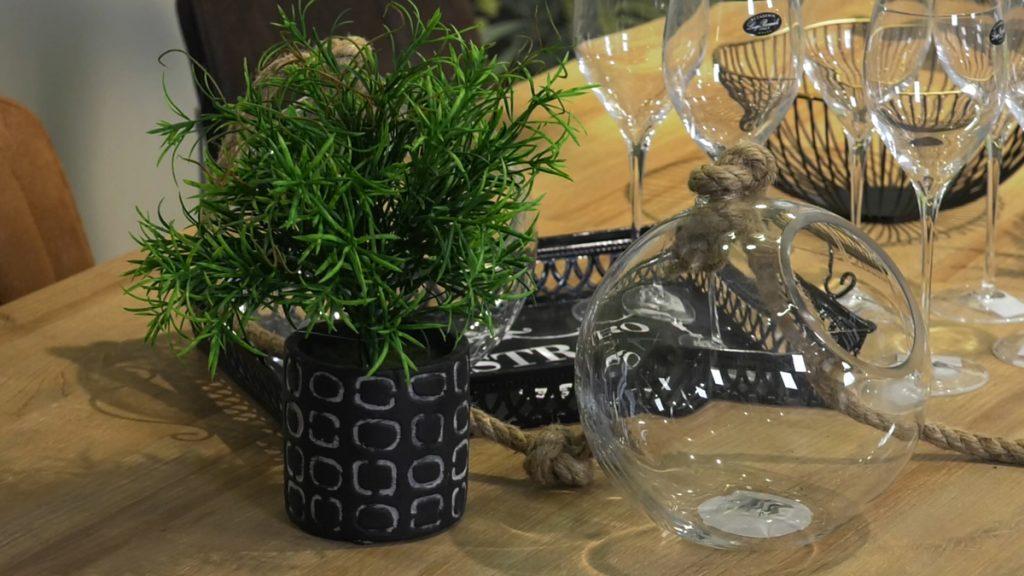 biljke-stol-priroda-domnakvadrat