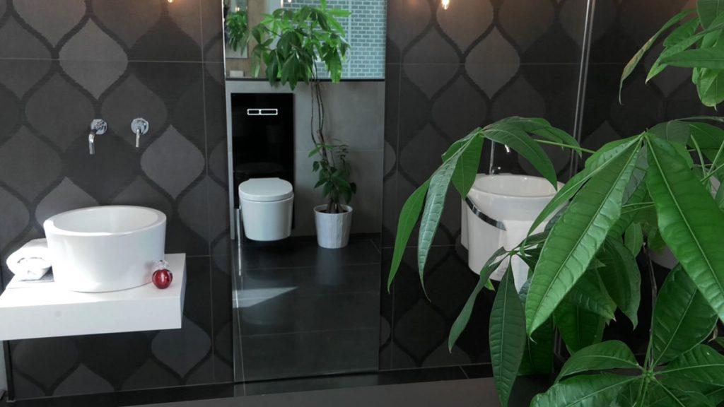 kupaonica-crna-biljke-petrokov-domnakvadrat