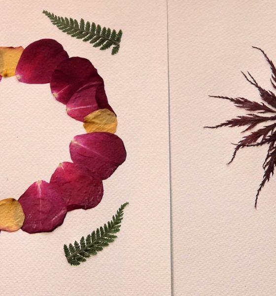 herbarij-umjetnost-domnakvadrat