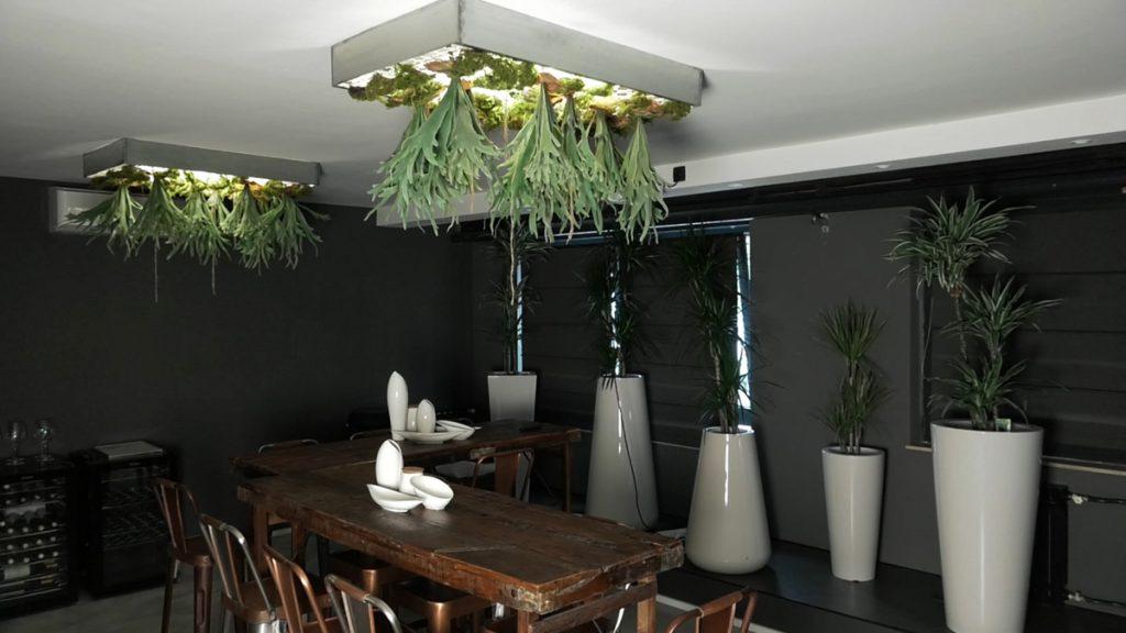 umjetne-biljke-strop-iris-mbm-vrtni-centar-domnakvadrat