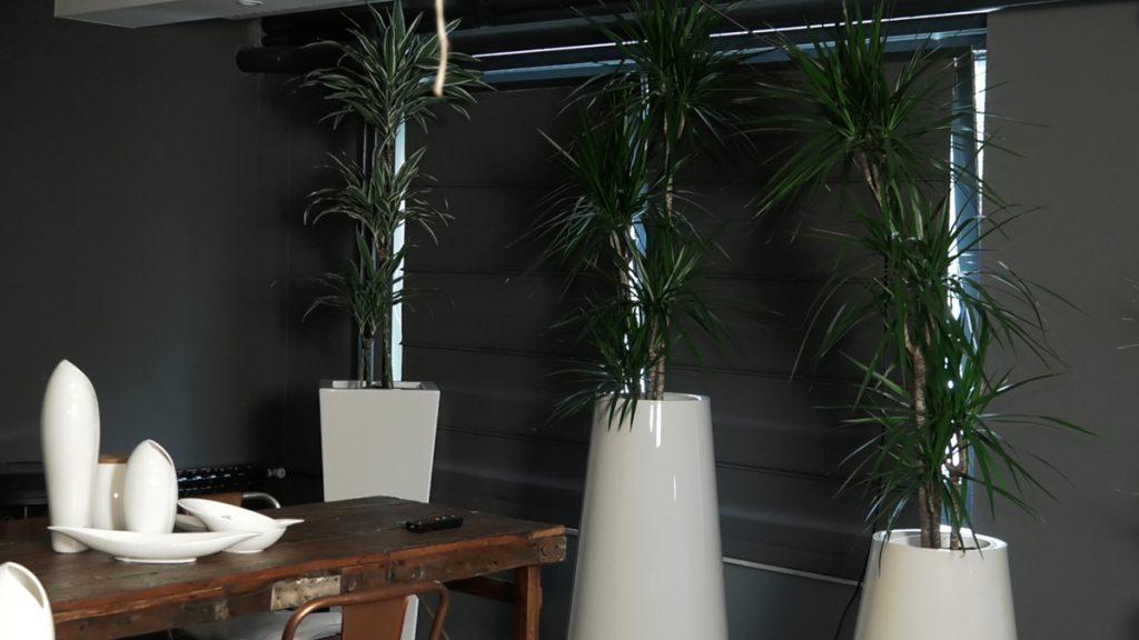 umjetno-bilje-iris-mbm-vrtni-centar-domnakvadrat