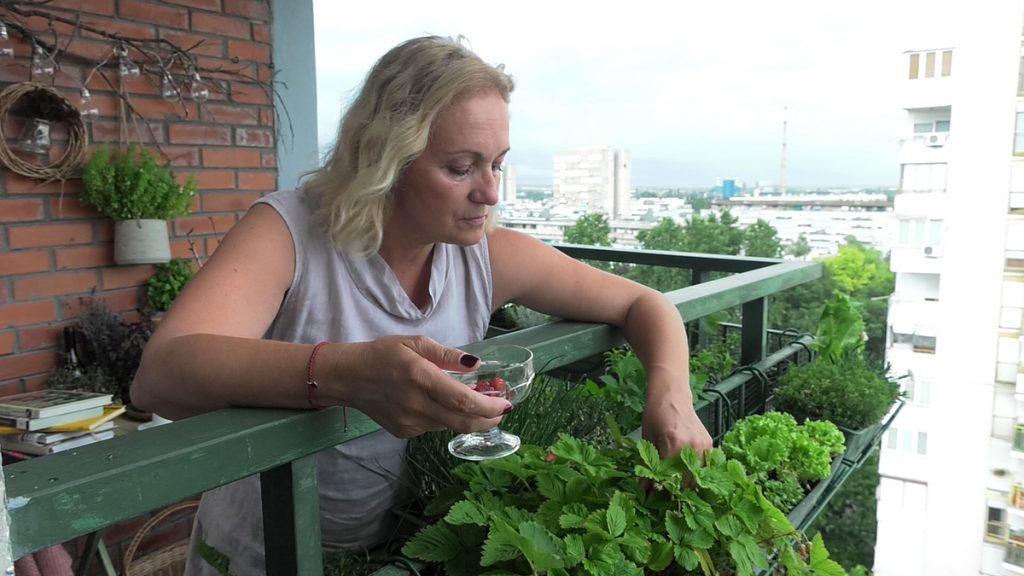 berislava-bilje-balkon-domnakvadrat