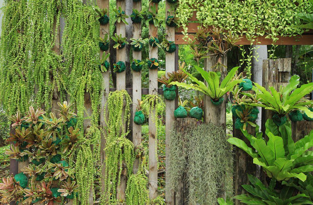 vertikalni-vrt-razne-biljke-domnakvadrat