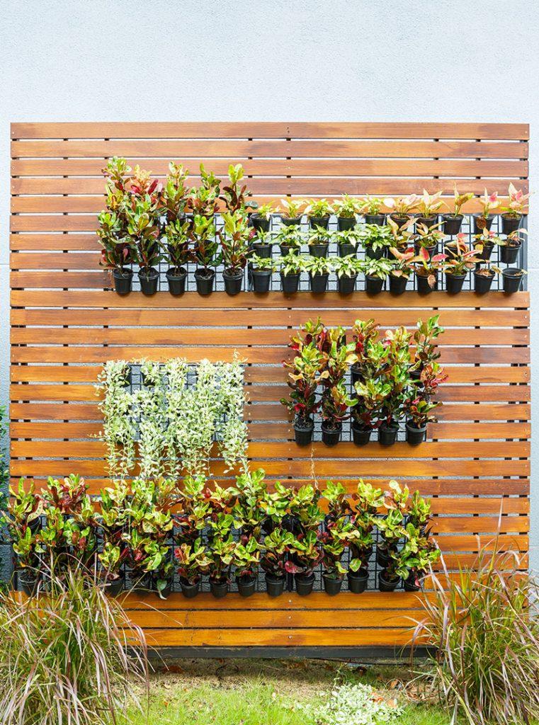 razne-biljke-male-tegle-vrt-domnakvadrat