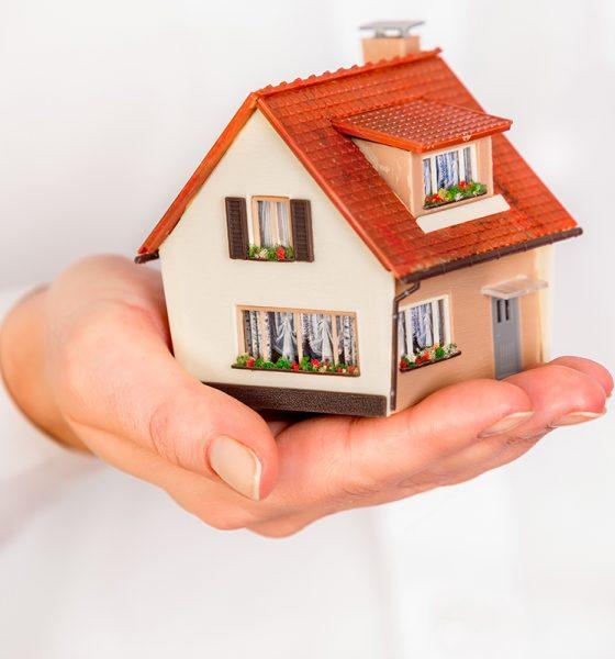 kuća-na-dlanu-domnakvadrat