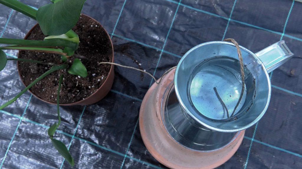 navodnjavanje-pomoću-užeta-vrtni-centar-šestine-domnakvadrat