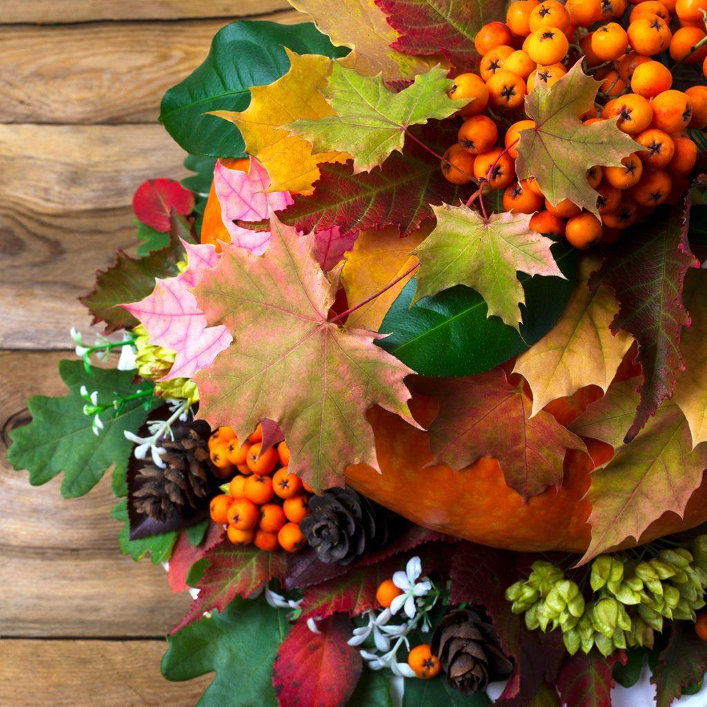 jesen-stolni-aranžman-domnakvadarat