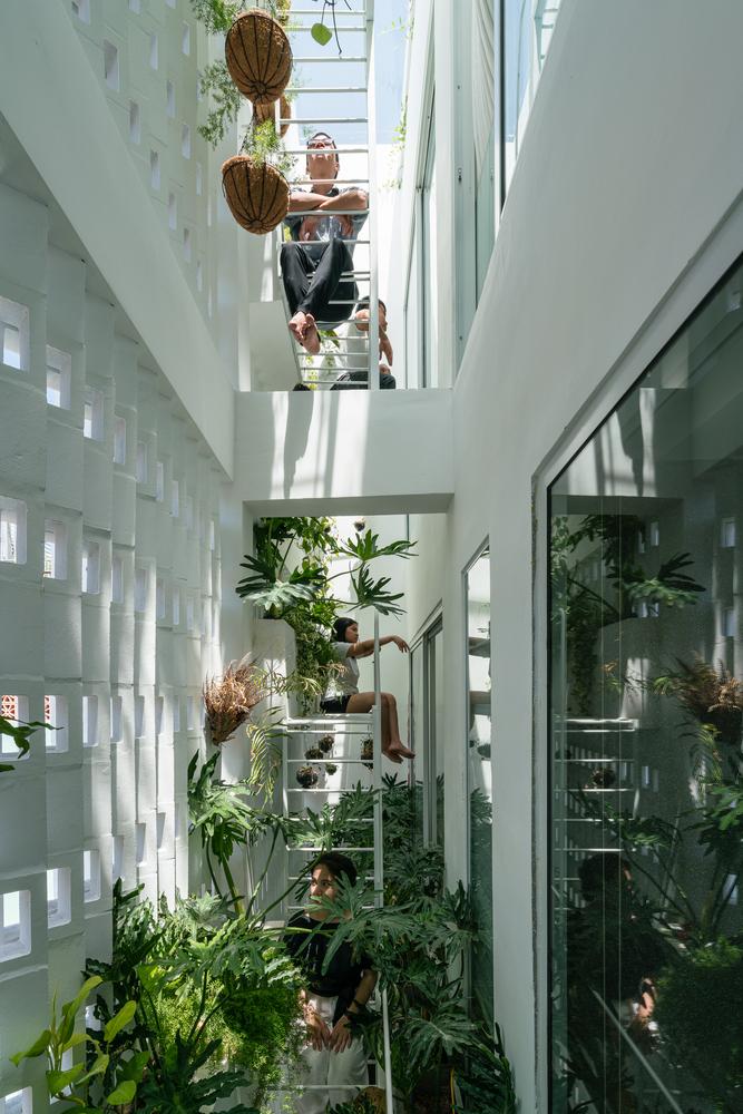 vertikalni-vrt-vijetnam-domnakvadrat