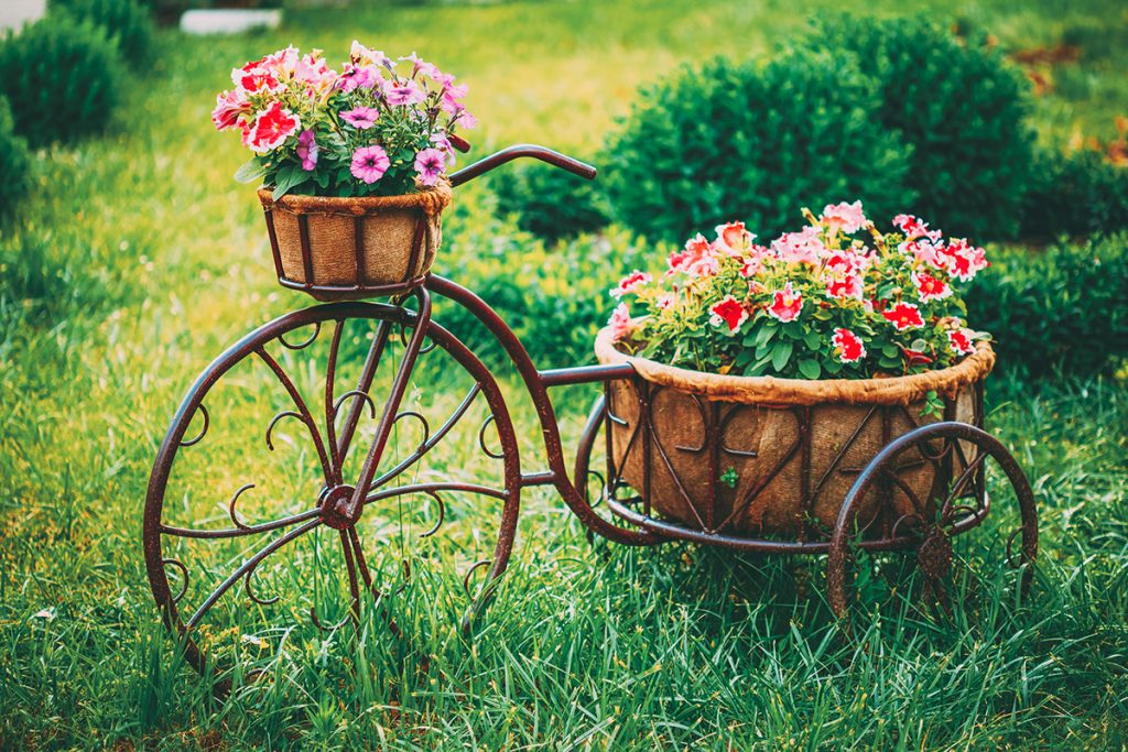 bicikl-cvijeće-domnkvadrat