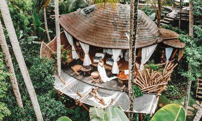 tree-house-džungla-domnakvadrat