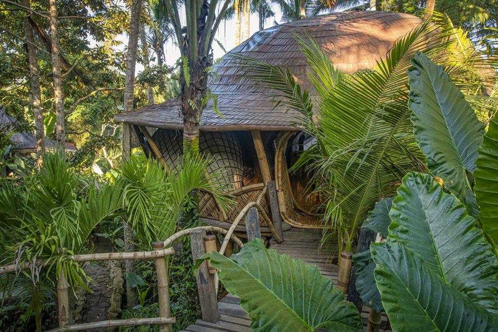 tree-house-ulaz-bambus-domnakvadrat
