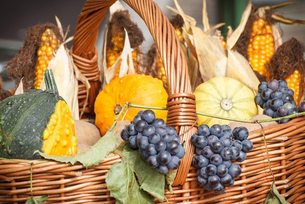 košara-puna-jesenskih-plodova-domnakvadrat